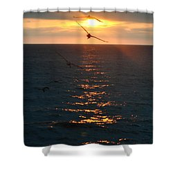 ...and At The End Of The Day... Shower Curtain by Valerie Rosen