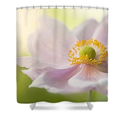Anemone Haze Shower Curtain by Jacky Parker