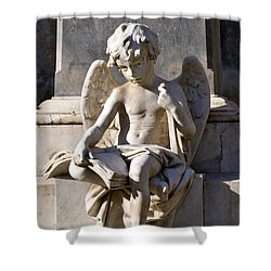 Angel Of Baroque Shower Curtain