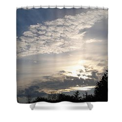 Angel's Wing Shower Curtain