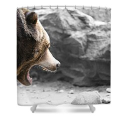 Angry Grizz Shower Curtain by Karol Livote