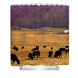 Shower Curtain featuring the photograph Angus And Oaks  Farm by Randall Branham