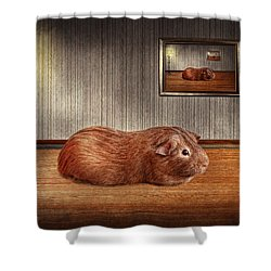 Animal - The Guinea Pig Shower Curtain by Mike Savad