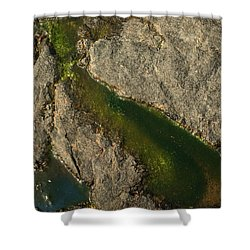 Another World Iv Shower Curtain