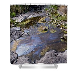 Another World Vi Shower Curtain