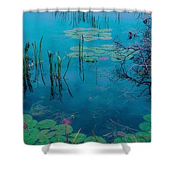 Another World Vii Shower Curtain