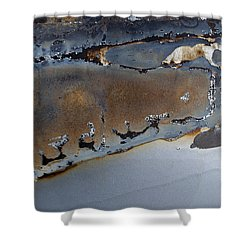 Ap12 Shower Curtain by Fran Riley