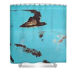 Ap13 Shower Curtain