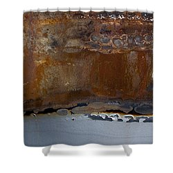 AP4 Shower Curtain by Fran Riley