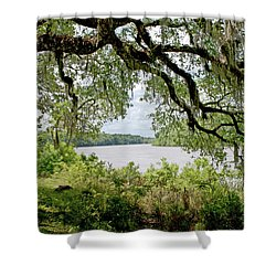 Apalachicola River Shower Curtain by Paul Mashburn