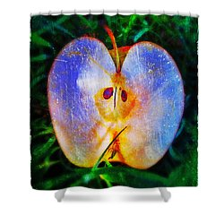 Apple 2 Shower Curtain by Skip Hunt