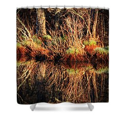 April's Pond Shower Curtain by Karol Livote