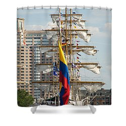 Arc Gloria 3 Shower Curtain by Mark Dodd