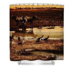 Shower Curtain featuring the photograph Around The Pond by Lydia Holly