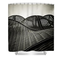 Artistic Curves Shower Curtain