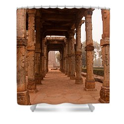 Artistic Pillars Are All That Remain Of This Old Monument Inside The Qutub Minar Complex Shower Curtain by Ashish Agarwal
