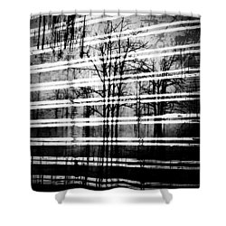 As The Swamp Sleeps Shower Curtain by Jerry Cordeiro