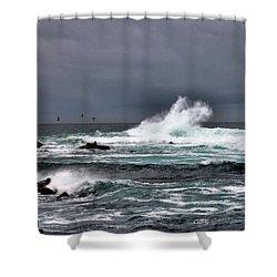 Asilomar 2007 Shower Curtain