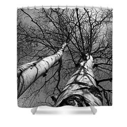 Shower Curtain featuring the photograph Aspen Glow by Colleen Coccia