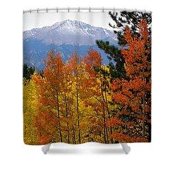 Aspen Grove And Pikes Peak Shower Curtain by Kimberlee Fiedler