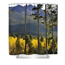 Shower Curtain featuring the photograph Aspen Heaven Long's Peak Area by Nava Thompson