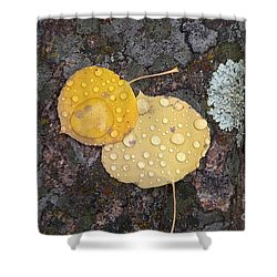 Aspen Tears Shower Curtain