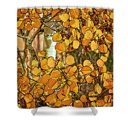 Aspens Gold Shower Curtain