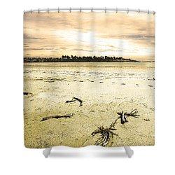 At Caroline Bay Timaru New Zealand Shower Curtain by Nareeta Martin
