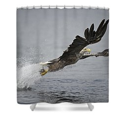 At Full Stretch Shower Curtain