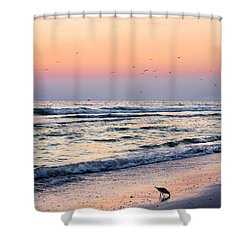 At Sunset Shower Curtain by Angela Rath