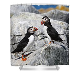 Atlantic Puffins Shower Curtain by Bruce J Robinson