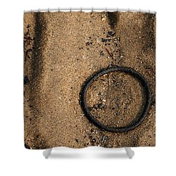Atres 6 Shower Curtain by Karol Livote