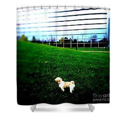 Shower Curtain featuring the photograph Atsuko Goes To School by Xn Tyler