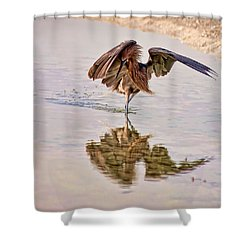 Shower Curtain featuring the photograph Attack Dance by Steven Sparks
