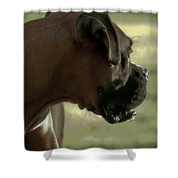Attention Is Elsewhere...as Usual Shower Curtain by DigiArt Diaries by Vicky B Fuller