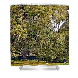 Audubon Park 2 Shower Curtain by Steve Harrington