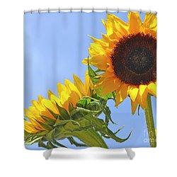 August Sunshine Shower Curtain