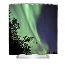 Aurora Borealis Above The Trees Shower Curtain by Jiri Hermann