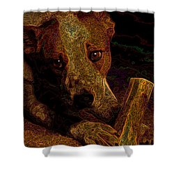 Australian Cattle Dog Shower Curtain by One Rude Dawg Orcutt