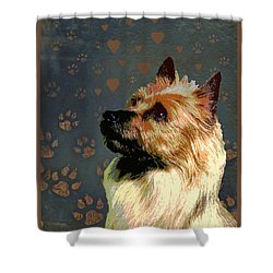 Australian Terrier Shower Curtain by One Rude Dawg Orcutt