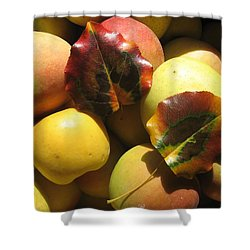 Autumn Apple Afternoon Shower Curtain