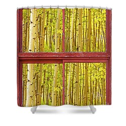 Autumn Aspen Trees Red Rustic Picture Window Frame Photos Fine A Shower Curtain by James BO  Insogna