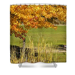 Autumn At The Schoolground Shower Curtain by Mick Anderson
