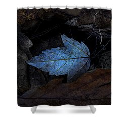 Autumn Blue Shower Curtain by Ron Jones