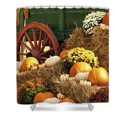 Autumn Bounty Vertical Shower Curtain by Kathy Clark