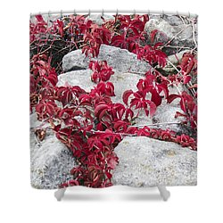 Autumn Color Is Red Shower Curtain