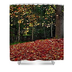 Autumn Colors Shower Curtain by Kaye Menner