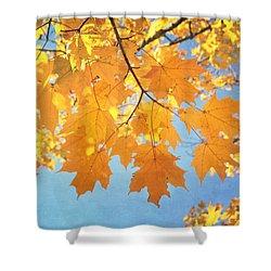 Autumn Colors Shower Curtain by Kim Hojnacki