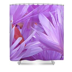 Autumn Crocus Shower Curtain by Michele Penner