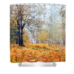 Autumn Dreams Shower Curtain by Evgeni Dinev